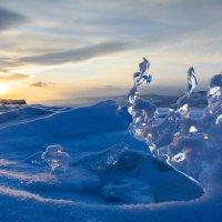 Ледяная красотка ) :: Елена Вторушина