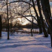Зимний вечер.............. :: Александр Селезнев
