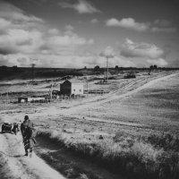 Дорога домой :: Дина Цакирова