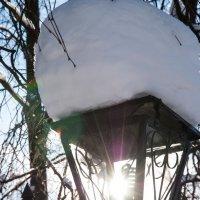 солнечный фонарь :: Олег