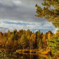 Осенняя красота Карелии :: Ольга Нежикова