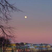 Зимний вечер :: Aнна Зарубина