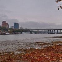 Осенний ноктюрн.... :: владимир