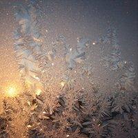 Зимнее утро :: Ольга