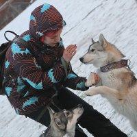 Давай пожмем друг другу руки.... :: Tatiana Markova