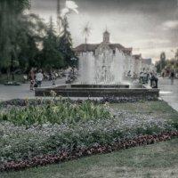Летний променад. :: Андрий Майковский