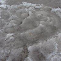 Снег у МКАДа. А вы что подумали? :: Андрей Лукьянов