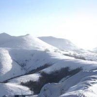 Золотые горы под снежной шапкой :: Natalia Petrenko