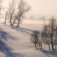 В морозной дымке :: Любовь Потеряхина