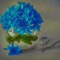 Blue :: Оксана Анисимова