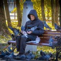 Одиночество и голуби :: Игорь .