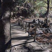 Тропа в ущелье Agias Irini, Крит :: Владимир Брагилевский