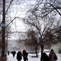 Мороз подгоняет! :: Нина Корешкова