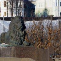 На страже города. :: Paparazzi