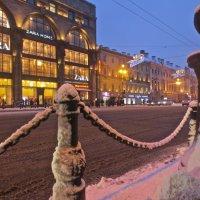 зимний вечер на Невском :: Елена
