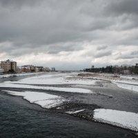 Зимний Сочи :: Алексей Петренко