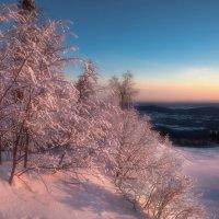 Холодное утро :: vladimir Bormotov