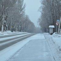 Снежное утро :: Анна