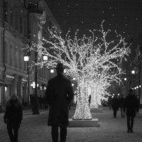 Прогулка по Камергерскому . . . :: Константин Фролов