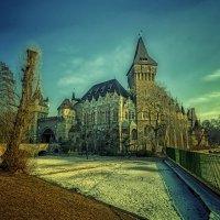 Замок Вайдахуняд :: Александр Бойко