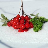 Кто витаминку в день съедает, у того доктор не бывает. :: Юрий Гайворонский