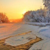 утренее золото реки :: Александр