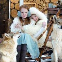 Девчонки с волками :: Дарья Медведева