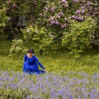 В Сиреневом саду :: Константин Фролов