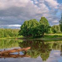Озеро в лесу :: Александр Березуцкий (nevant60)