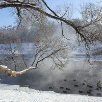 Морозное утро на реке Исеть :: Татьяна Грищук