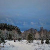 Зима в разгаре :: Николай Масляев