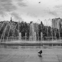 После дождя :: Константин Фролов