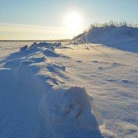 Берег реки Кудьма, окраина города Северодвинска. :: Михаил Поскотинов