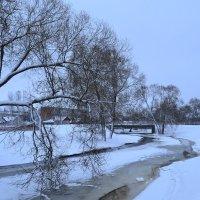 Ледяная река. :: zoja