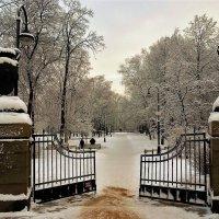 Ворота в зимнюю сказку... :: Sergey Gordoff