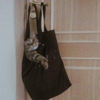 "Кот в ""мешке"" :: Хеди Ган"