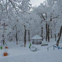 Зима в Коджори :: Наталья Джикидзе (Берёзина)
