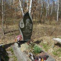 Жизнь  --------  это   миг  .......... :: Андрей  Васильевич Коляскин