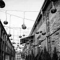 Зимние улицы Торонто :: Anna Shevtsova