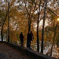 Прогулки в осень :: Екатерина Торганская