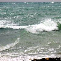 Зимнее море :: Нина Бутко