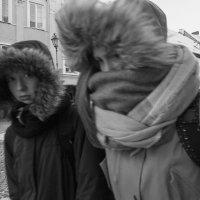 Мороз и ветер. :: Евгений Поляков