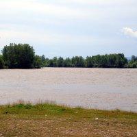 Река Уда :: Валентин Когун