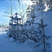 Ещё зима :: Leonid Rutov