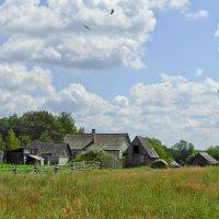 Летом в деревне :: Татьяна Панчешная