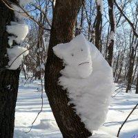 К вопросу о снежных зверушках :: Андрей Заломленков