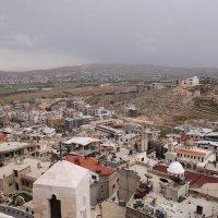 Сирия, 2010 г. :: imants_leopolds žīgurs
