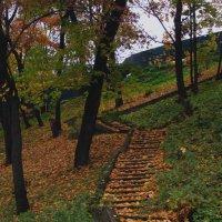 Лестница в осень... :: Павел Зюзин