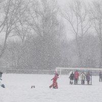 Снегопад не помеха :: Андрей Михайлин