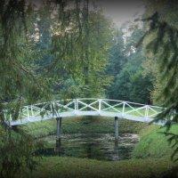 Пруд, через который перекинут ажурный мостик :: Елена Павлова (Смолова)